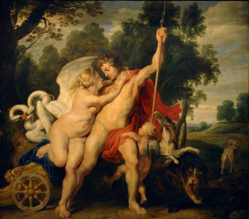 Rubens -  Venere e Adone